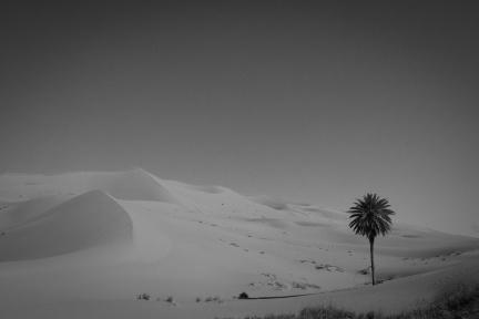 Sahara / Maroko