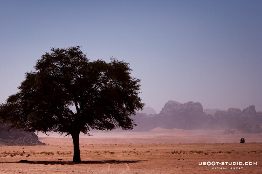 fotogaleria-jordania-9